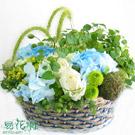 綠光花影造型盆花