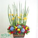 繽紛秋彩造型盆花