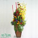 金色年代盆花