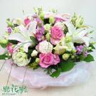 淡粉花彩盆花設計