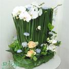 庭園花影盆花設計