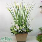 陽明山海芋盆花設計