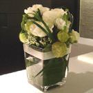 白玫瑰造型盆花