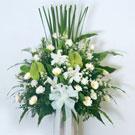 易花網-網路花店是專業的台北花店、網路花店為你供應各式精美的鮮